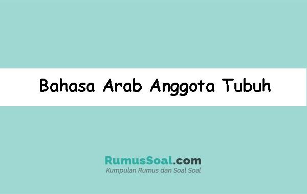 Bahasa-Arab-Anggota-Tubuh