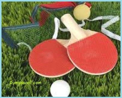 Tenis-meja