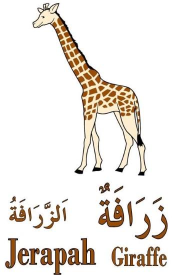 jerapah-1