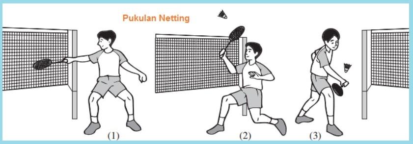 Pukulan-Netting