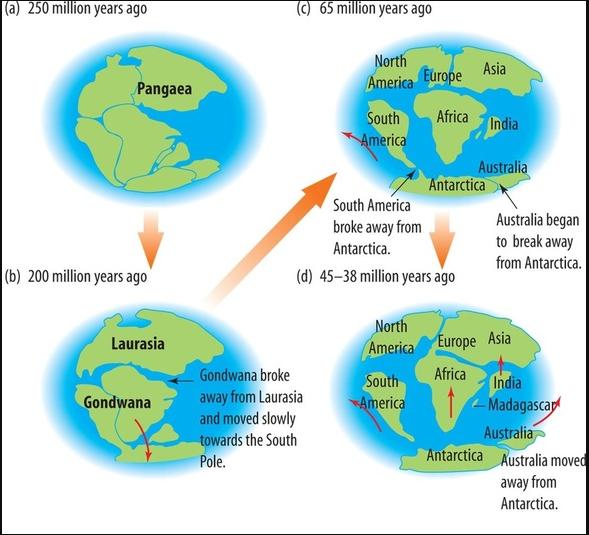 Teori Apungan Benua (Continental Drift Theory)