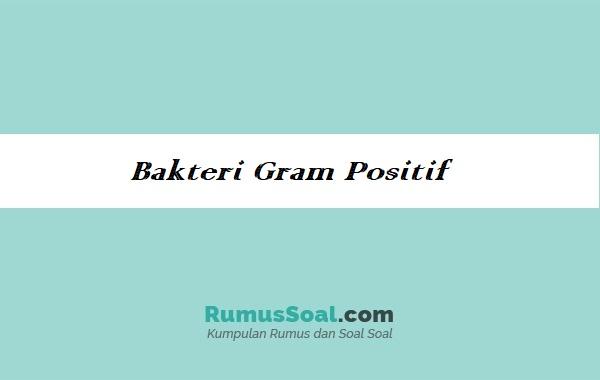 Bakteri-gram-positif