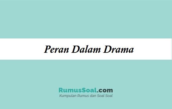peran-dalam-drama