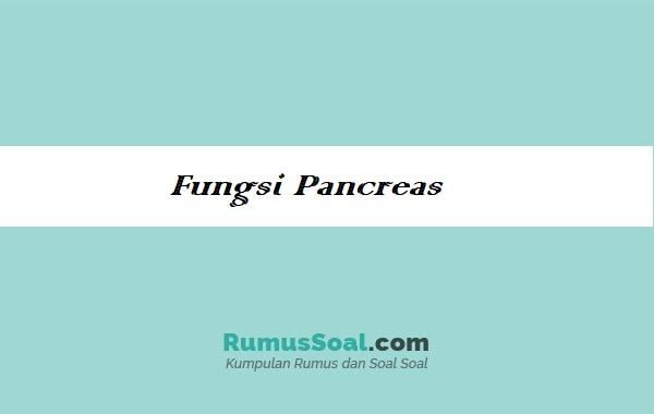 Fungsi-Pancreas