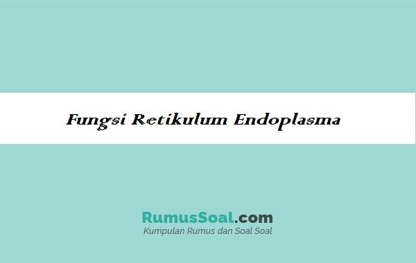 Fungsi-Retikulum-Endoplasma