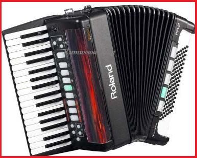akordeo-1