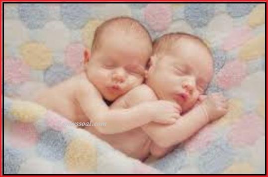 bayi-kembar-1