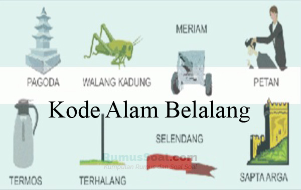 Kode Alam Belalang