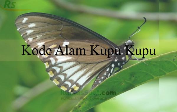 Kode Alam Kupu Kupu