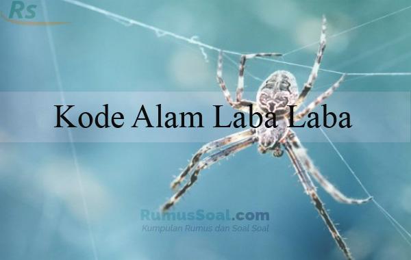 Kode Alam Laba Laba