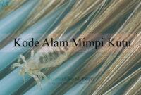 Kode Alam Mimpi Kutu