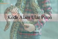 Kode Alam Ular Piton