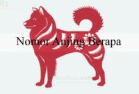 Nomor Anjing Berapa
