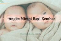 Angka Mimpi Bayi Kembar