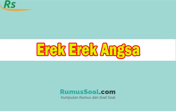 Erek Erek Angsa