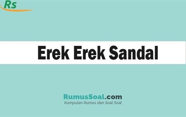 Erek Erek Sandal